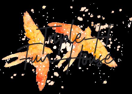 Triple H Fun House